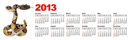 American calendar for 2013 with image a snake