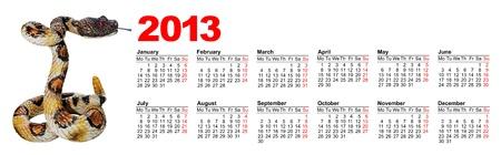 European calendar for 2013 with image a snake Stock Photo - 15256163
