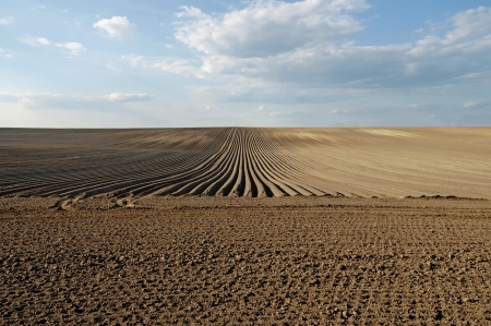 ploughing field: Plowed field after ploughing with furrows Stock Photo