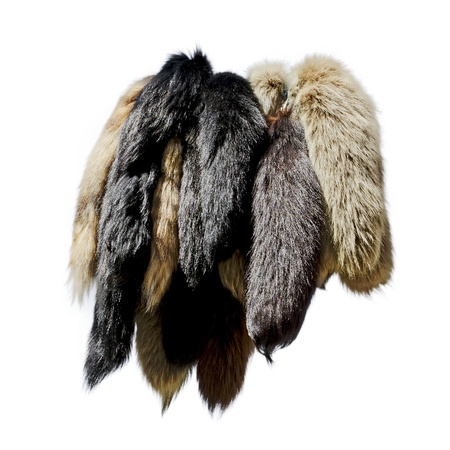 villi: Multi-colored fur skins isolated on white background