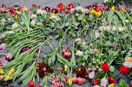 maidan: Flowers in honor of those killed in the Maidan in Kiev, lying on the Maidan in Lvov