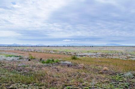 russia steppe: Beautiful scenery - Steppe landscape in the Crimea, Russia