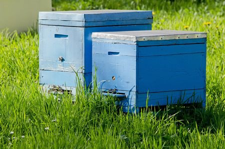 apiary: Agricultural landscape - Two bee hives in the apiary