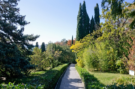 vorontsov: Landscape design - Alley in the park by the sea in the Vorontsov Palace in Alupka, Yalta, Crimea Stock Photo