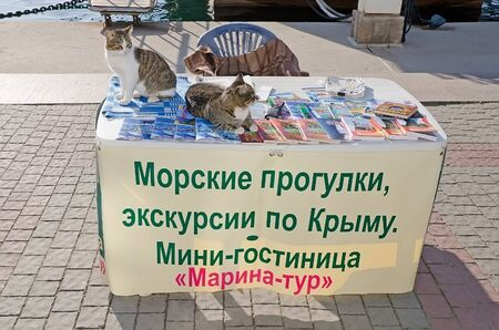 excursions: SEVASTOPOL, CRIMEA, RUSSIA - NOVEMBER 04: Two cats are EN table seller tourist excursions on the waterfront in Balaklava on November 04, 2014 in Sevastopol, Crimea, Russia Editorial