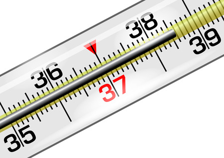 Medical thermometer with a reading of 38.6 degrees in vector isolated over white
