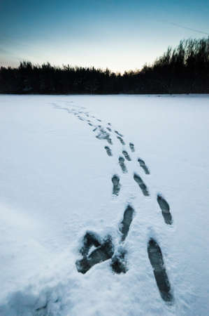 Wet footprints on snow at the evening, near wood Stock Photo - 11880601