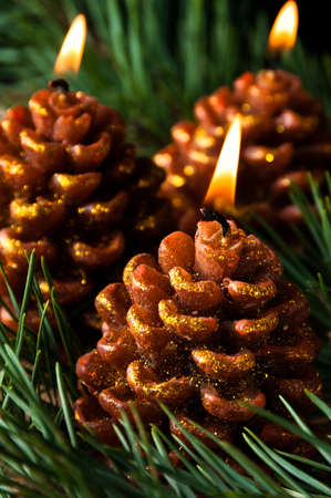 pine three: Three candles like pine cones burning in evergreen needles Stock Photo
