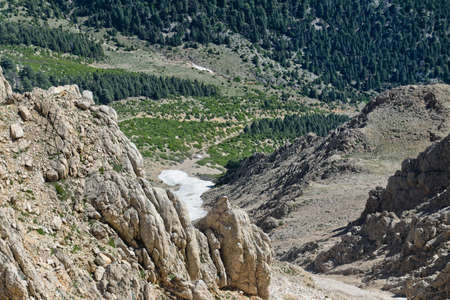 high sierra: Part of plateau with cliff, snow, rocks and forest Stock Photo