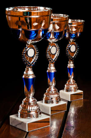Three main tournament prizes standing on the wooden table