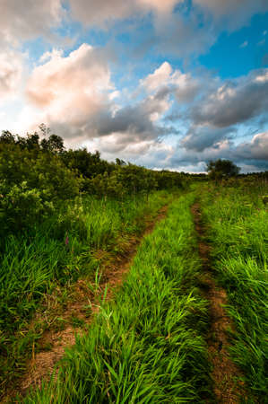 Rural grass way tracks at sunrise with beautiful cloudscape