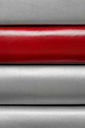 Leather striped pattern with one bright red line Stock Photo