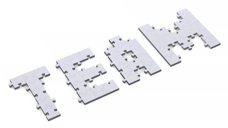 assembled: 3d team text assembled of grey puzzle pieces, perspective view