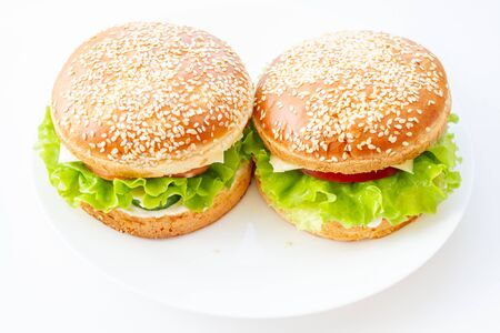 Two sandwiches with sesame rolls on a white plate. Home made burger.
