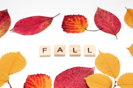 FALL text made from wooden blocks with leaves. Autumn backdrop Stock fotó
