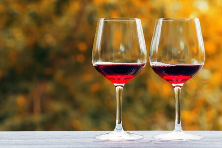 romantic sex: red wine for two in glass, romantic day