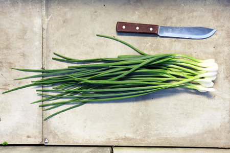 onion: bunch green onions, top view. on a stone background