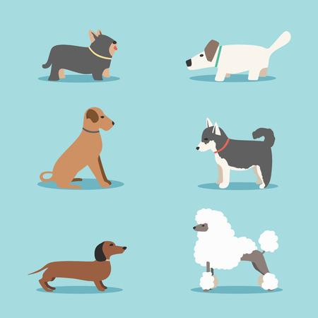 persona caminando: Conjunto de perros. ilustración vectorial de dibujos animados. clínica veterinaria. Venta de perros de raza pura. fondo aislado. estilo plano. Los perros domesticados