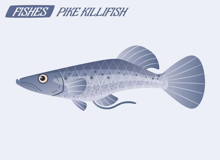 Pike killfish character. Cartoon vector illustration. Fishing or food concept