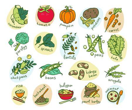 Vegetable hand drawn vector illustrations set Ilustração Vetorial