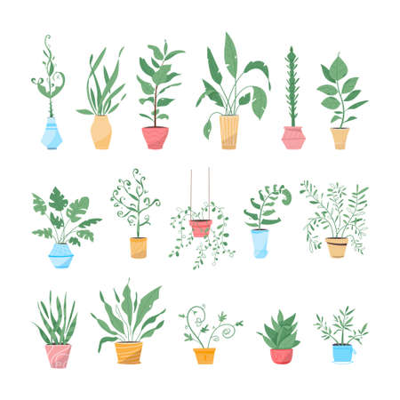 Potting trees, flowerpots hanging, plants in pots set isolated objects 向量圖像