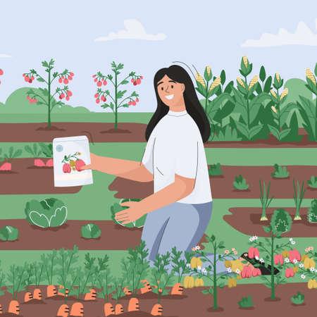 Woman sows seedlings in garden. Farmer grows agriculture plant Illusztráció