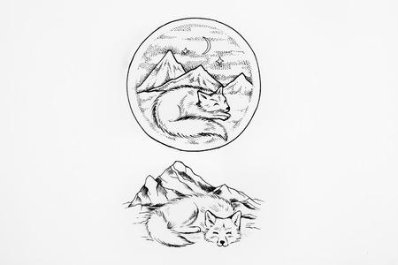 Zorro ártico Duerme En El Fondo De Las Altas Montañas. Fotos ...