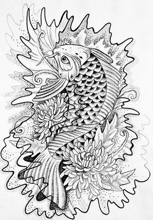 drawing: Sketch of a Japanese carp white background.