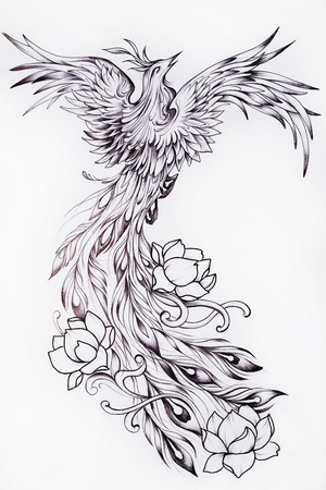 mythical phoenix bird: Sketch of a beautiful Phoenix with flowers. Stock Photo