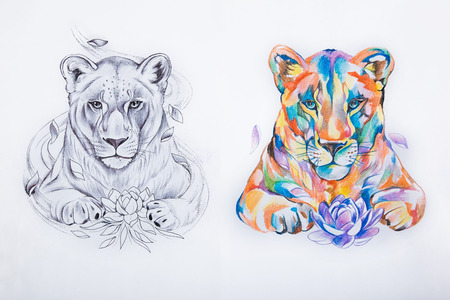 Sketch of two lions on a white background.