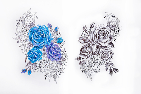 Sketch two sets of roses on white background. Stock Photo
