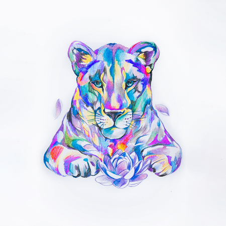 Sketch of lion in the style watercolors on white background. Stock Photo