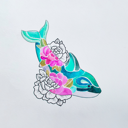 Sketch killer whale in colors on a white background.