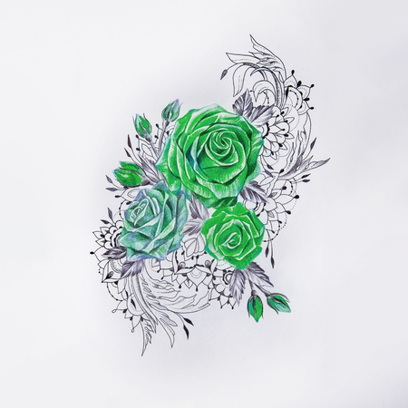 Sketch of beautiful green roses on a white background.