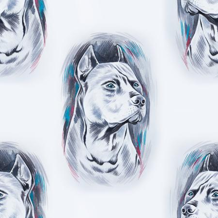 stafford: Seamless pattern of a beautiful dog on a white background. Stock Photo