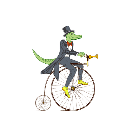 Sketch of a crocodile in a dress coat on a retro bicycle on a white background. Illustration