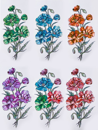 Set of sketches of multicolored flowers on a white background.