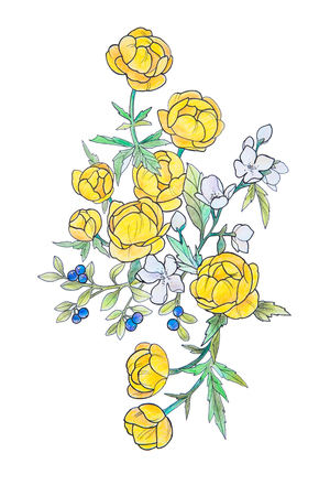 Sketch of beautiful yellow flowers on a white background.