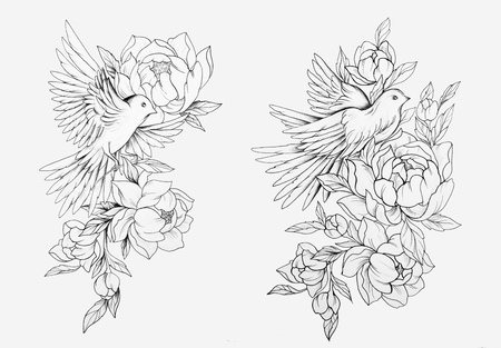 Sketch of a bird in flowers on a white background. Pigeon in peonies. Standard-Bild