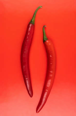 Two Fresh hot chili peppers on red bright surface. Closeup High quality photo