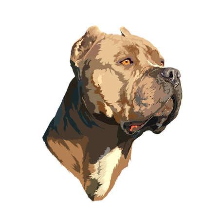Bild für die Abfertigung von Waren für Haustiere, Druck und Interieur Standard-Bild - 70190582