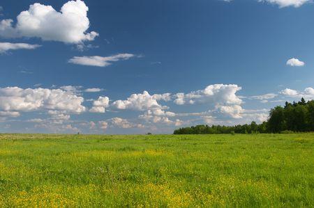 firmament: Green & Blue background Stock Photo