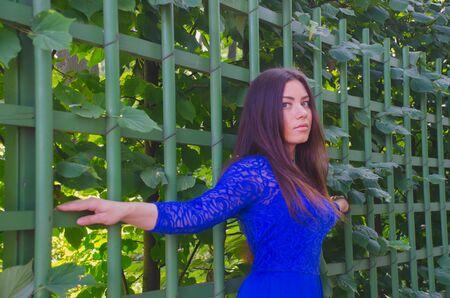 girl in blue summer dress leaned against the green hedges