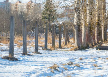 concrete pillars moving into the trees with the snow in the winter term.