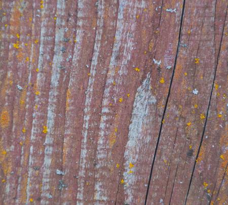 diagonal stripes: background. wood texture with diagonal stripes.