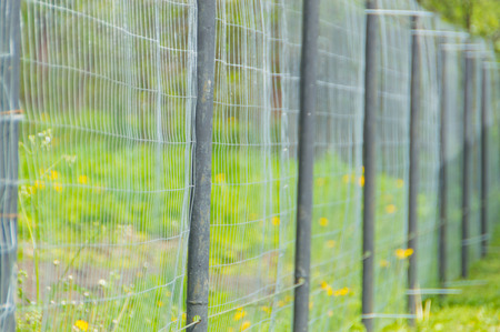 fencing steel mesh and metal pipe fence.
