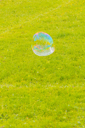 in the Park flying a large soap bubble.