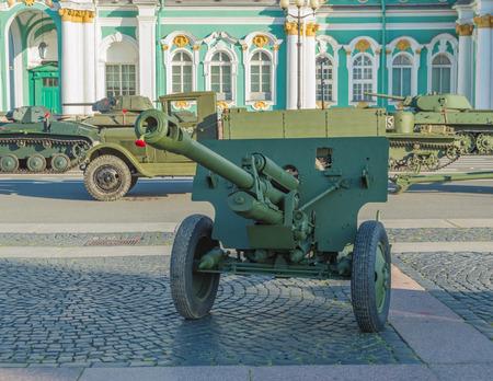 in the barrel artillery, guns, flowers, red carnations.