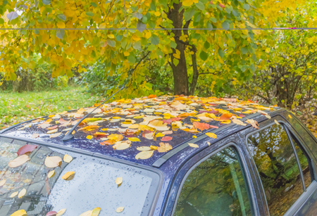 covered with leaves the car in the Parking lot