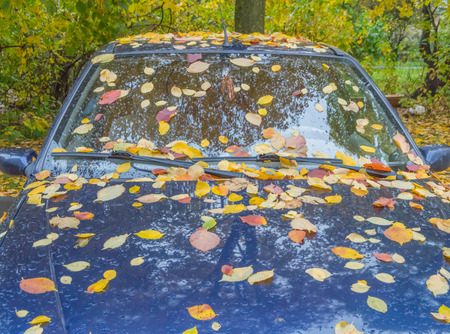 in the fall of parked car covered with leaves Stock Photo